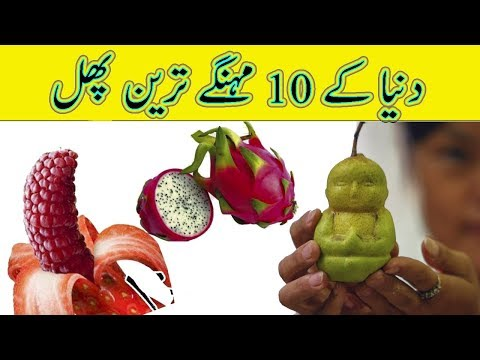 Most Expensive Fruits In The World - Information In Urdu / Hindi