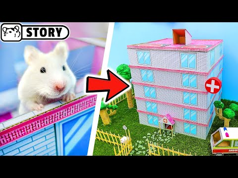 Hamster Hospital Maze  The Adventures of Granny Homura in the Hospital  Come and Enjoy