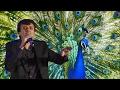 Mor Bani Thangat Kare video