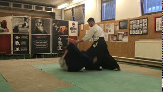 [TUTORIAL] Aikido empty hand technique: katate ryotedori iriminage