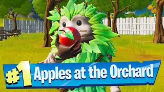 Gambar cover Consume Foraged Apples at The Orchard Location - Fortnite Battle Royale (Trick Shot Challenge)