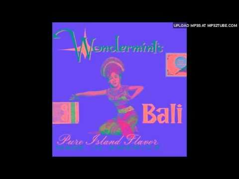 Wondermints - In And Around Greg Lake