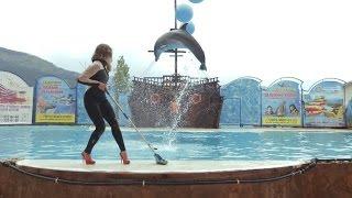 АКВАТОРИЯ - На дельфинах \ AKVATORIYA - Na del'finah ( Пародия ЛЕНИНГРАД - экспонат)
