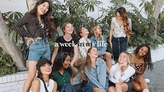 A WEEK IN MY LIFE with YouTubers | vlog + grwm
