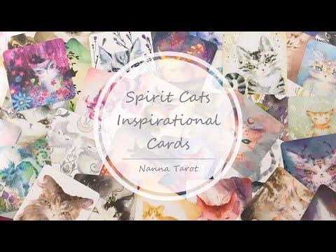 開箱  靈魂貓啟發卡 • Spirit Cats Inspirational Cards // Nanna Tarot
