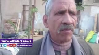 صناعة إنتاج العسل بقرية شبشير الحصة بالغربية بين الحياه والموت ..فيديو