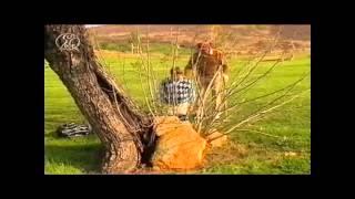 Dorfs Golf Bibel