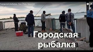 Городская рыбалка. Нью Йорк. Бруклин.