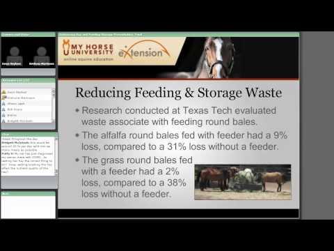 Optimizing Hay and Feeding Storage