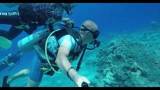 Крутой дайвинг в Красном море Шарм Эль Шейх Египет