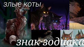 Гороскоп злых котов воителей