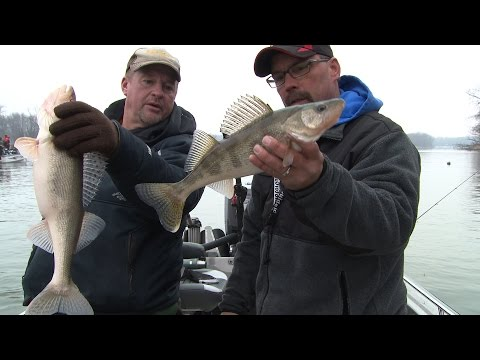 Larry Smith Outdoors -  Winter Mississippi River Walleyes and Saugers