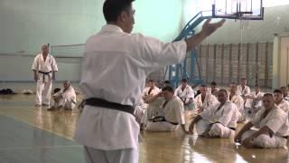 Master Class Hajime Kazumi in Russia (Nizhny Novgorod) 20-08-14 #Ka...
