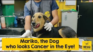 Determined to Recover from Tumours, Here's Mariko Reaching Out for your Help!