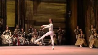 Swan Lake pas de trois 1 act Bolshoi Ballet 2011