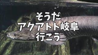 【水族館】アクアトト岐阜に行ってきました