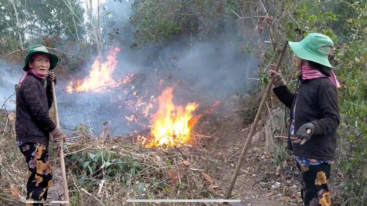 Mẹ Tính đi dọn cây cỏ khô đốt rẫy mà cứ sợ bị cháy lang qua rẫy nhà người khác