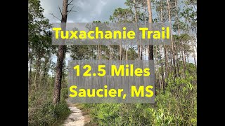 Tuxachanie Trail - Trąils in Mississippi