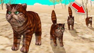 СИМУЛЯТОР КОТЕНКА #31 НОВЫЕ КОТЯТА и ОБНОВЛЕНИЕ в игре Cat Sim ДЕТСКИЕ ИГРЫ
