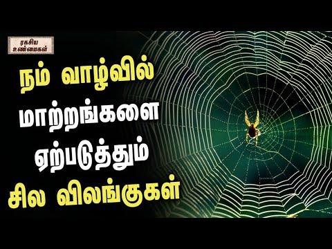 நம்-வாழ்வில்-மாற்றங்களை-ஏற்படுத்தும்-சில-விலங்குகள்-  -unknown-facts-tamil---ரகசிய-உண்மைகள்