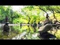 Música Relajante Oriental | Música de Relajación y Meditación Zen | Música para Relajarse, Masajes