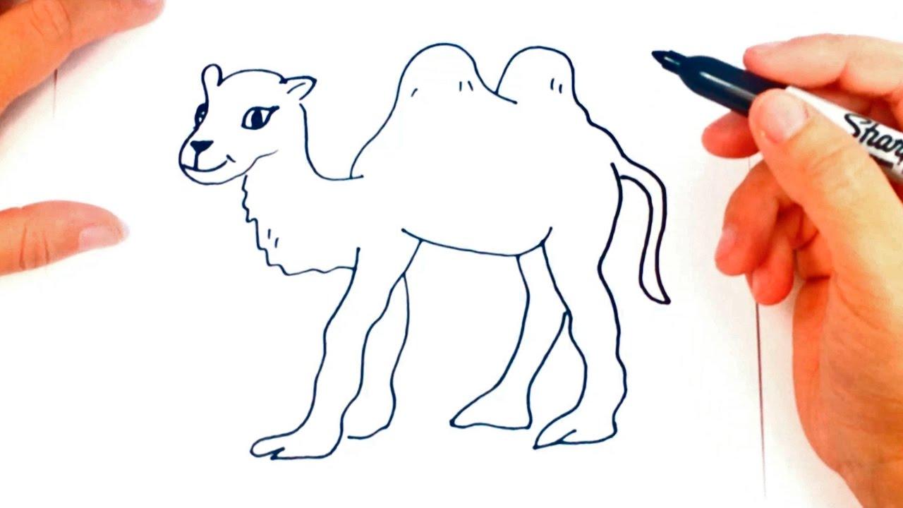 Como dibujar un Camello | Dibujo de Camello paso a paso - YouTube