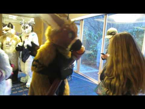 Shy Girl Meets Telephone At ANE