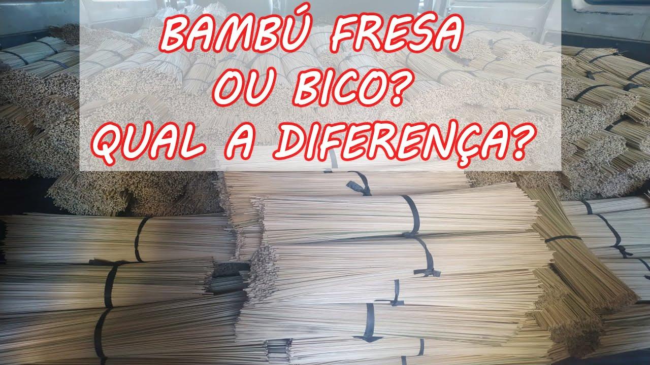 Bambú Fresa ou Bico Você sabe a Diferença?