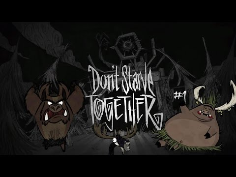 Don't starve Together #1(coop)