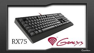 genesis rx75 klawiatura mechaniczna za 250 złotych test recenzja