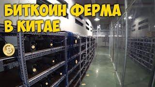 Ферма для майнинга (Bitcoin или Litecoin)  3 шт Radeon HD7970