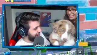 SypherPK Gets A Puppy!! (Fortnite Battle Royale Highlights)