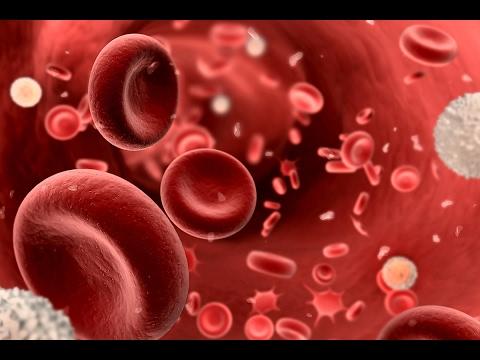 #صحتك_تهمنا | #الثلاسيميا مرض يسبب عجزا كليا أو جزئيا بدم الإنسان  - نشر قبل 3 ساعة