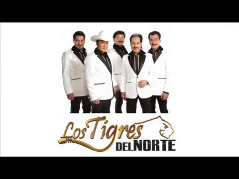 Los Tigres Del Norte - America (Letra)