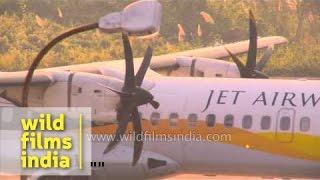 Jet Airways flight departs from Lengpui airport, Mizoram