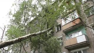 в Кирове на дом упало дерево(ГТРК Вятка)(, 2016-08-16T12:38:38.000Z)
