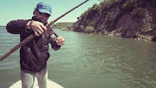 turna avı için bir kaç bilgi