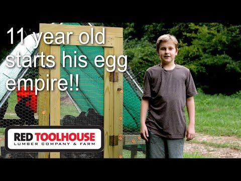 Cam details his egg laying chicken setup with cost breakdown
