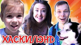 Хаски и Хаскилэнд в парке Сказка - Отдых в Москве - Куда сходить
