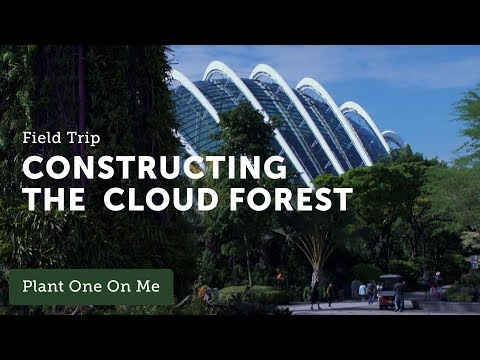 Ep 098. Building Gardens by the Bay in Singapore — 1 of 5
