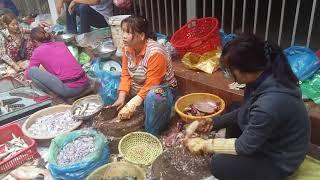 Amazing Street Market Active, Khmer Street Market, Asian Street Market, Cambodian Street Market #845