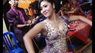 Download Video Full Goyang Eksotis Minul Ngadirojo Wonogiri - Campursari LARASATI Setren Slogohimo MP3 3GP MP4
