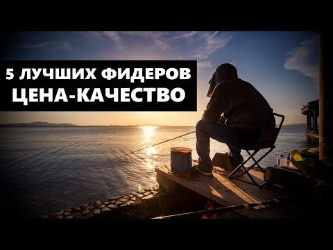 5 ЛУЧШИХ ФИДЕРОВ ЦЕНА-КАЧЕСТВО