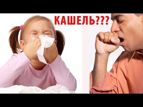 Лечение кашля у детей народными средствами. Кашель у