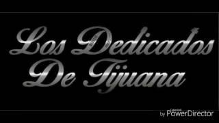 La Bola-Los Dedicados De Tijuana-En vivo