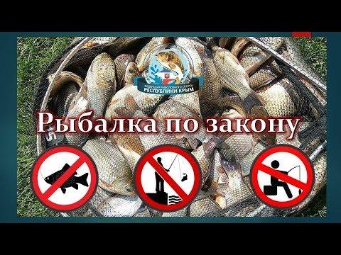 Рыбалка по закону (Учимся ловить рыбу по закону) Вступление