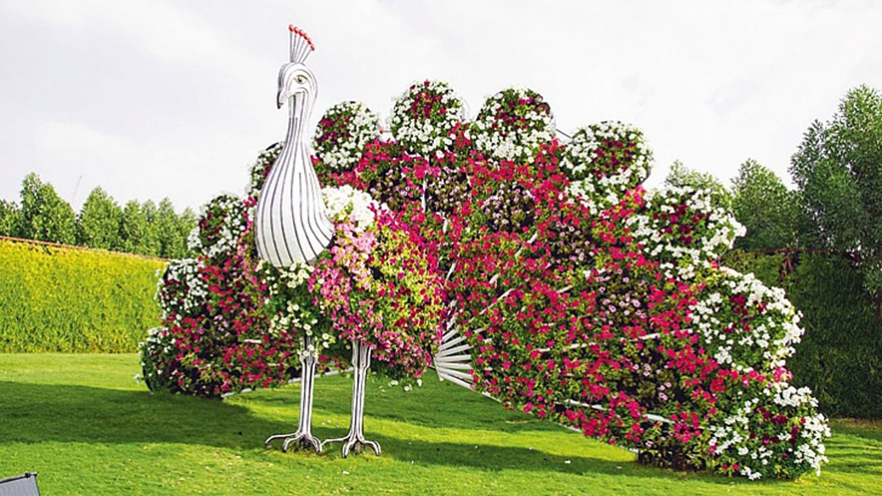 Wedding In Dubai Miracle Garden Dubai Land Al Barsha - YouTube