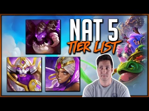 NAT 5 TIER LIST | TOP 10 CHAMPIONS | Dungeon Hunter Champions