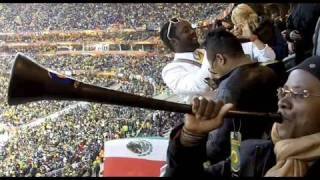 Angelique Kidjo cheering at the opening game of the 2010 World Cup