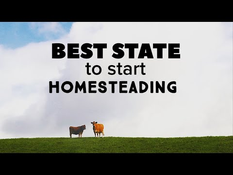What Is The Best State for You to Homestead In?